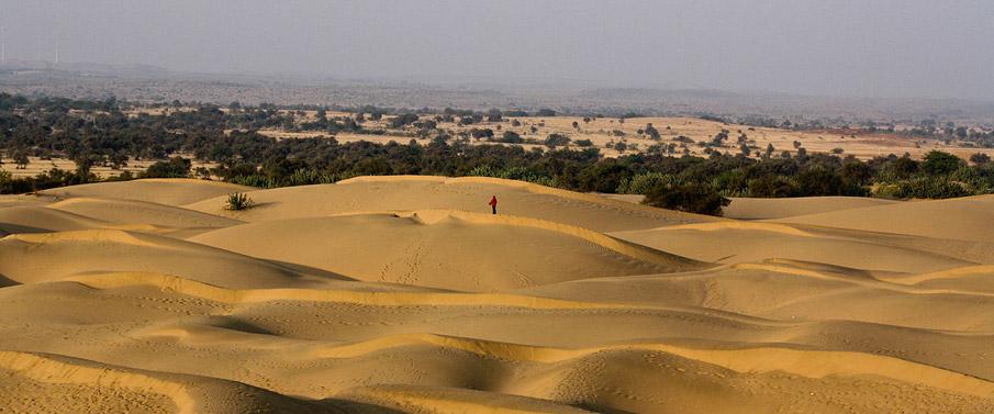 thar-desert